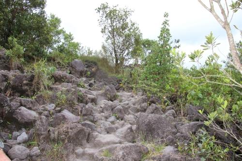 Costa Rica : le parc du volcan Arenal et Libéria