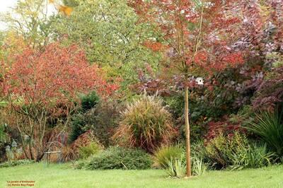 Le jardin préféré des Français (1/2) : Le Jardin d'Entêoulet