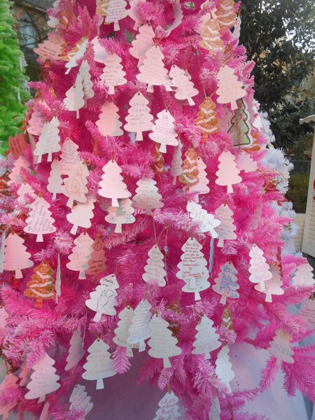 Noël à Toulouse