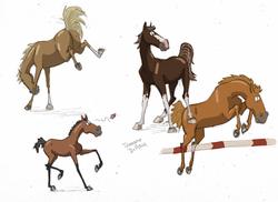 Quelques races de chevaux (pas fini)