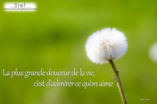Petite Marie:Francis Cabrel
