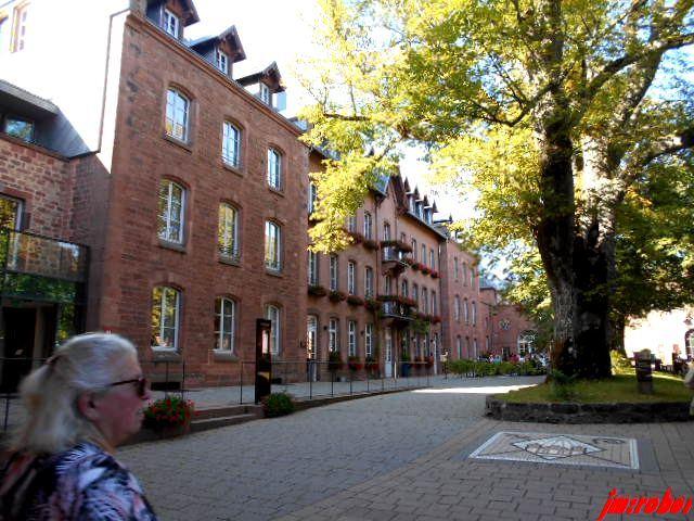 """Découvrir en 4 jours l'Alsace et ce """"Mont""""  cher au cœur de tous les Alsaciens.7"""