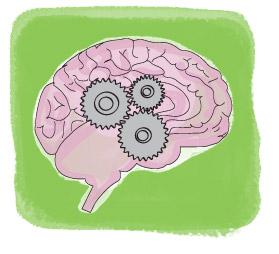 Hypothèse cognitivo-comportementale