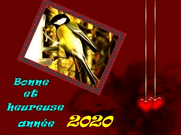 Bonne et heureuse année 2020 !