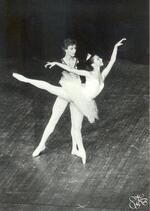 Pas de deux - La Belle - Ghislain de Compreignac et Isabelle Horowitz