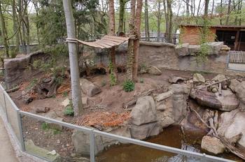 Zoo Osnabruck d50 2012 121