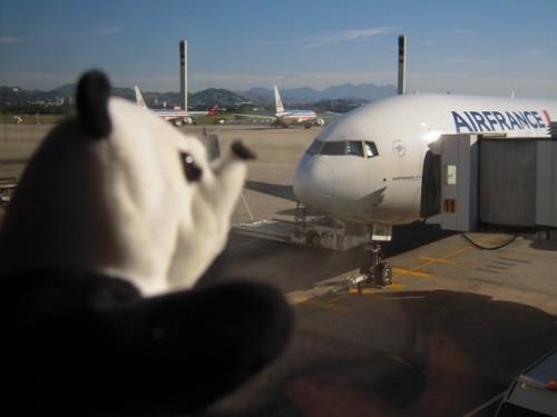 un panda à Rio 050