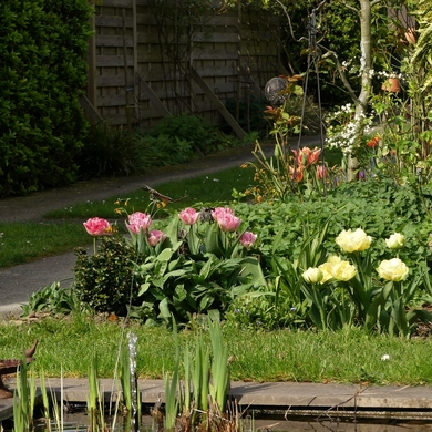 Le bonheur est au jardin...