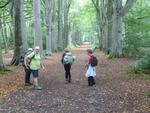 La randonnée du 29 septembre à Cricquebeuf