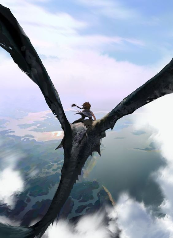 Hiccup and Stormshadow - How to Train Your Dragon