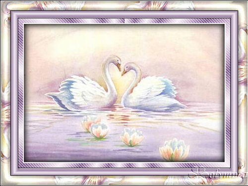section 1 Cours n° 3 - Cadre Cygne amour