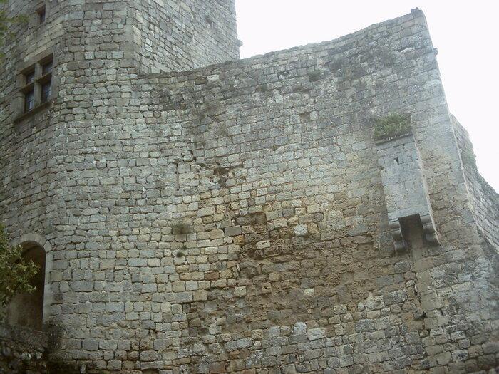 Le château de Langoiran est un château médiéval situé à Langoiran, commune du département de la Gironde, en France, dans l'Entre-deux-Mers. Il domine le hameau du Pied-du-Château, à proximit
