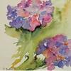 hortensias juillet [640x480]