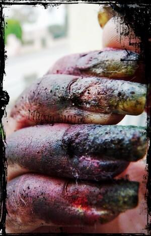 Les ongles d'une Zombinette