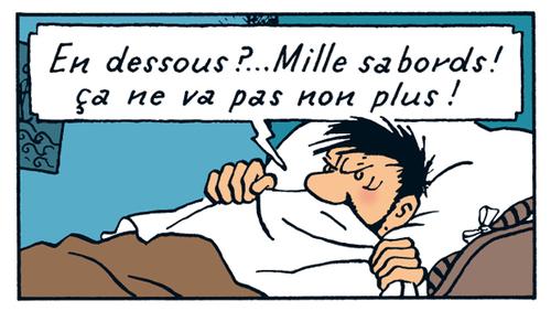 Tintin, les fils et la descente en zinc (Promenade des Douves)