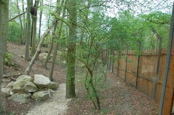 Zoo Osnabruck d50 2012 140
