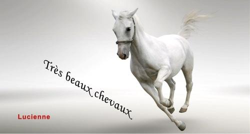 Les Chevaux (Akia)