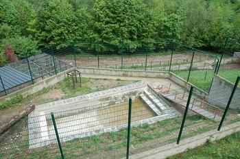 Parc animalier Bouillon 2013 enclos 105