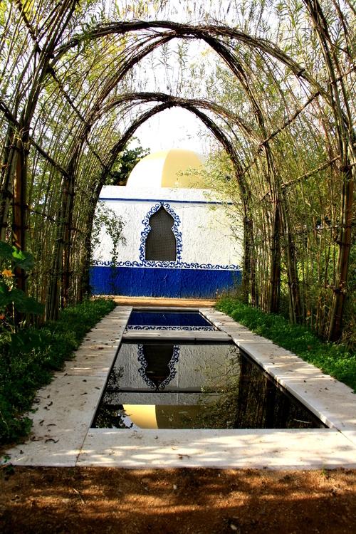 Découvrir la végétation d'un continent dans des jardins thématiques