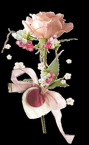 Ornements Floraux Série 17