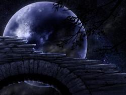 La nuit (encore)