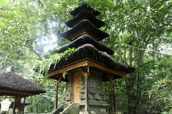 Bali juin 2016