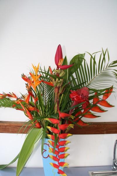 juin-fleur 043