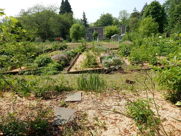 Jardin Massart
