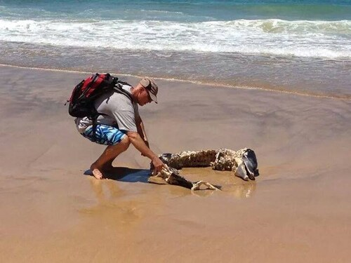 Photos - Pays du monde - 3 - L'Australie - bizarres