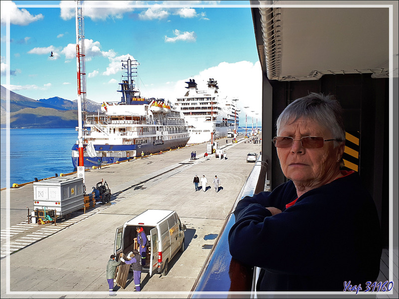 Sur le soir, retour au port d'Ushuaïa et embarquement direction les îles Falkland après 2 jours de mer - Argentine