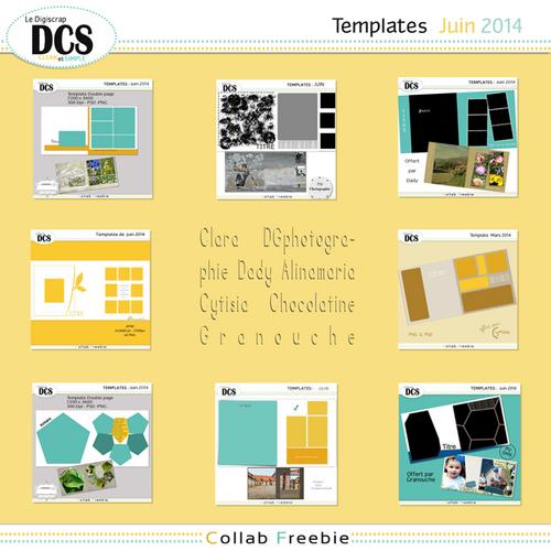 DCS Les templates de JUIN