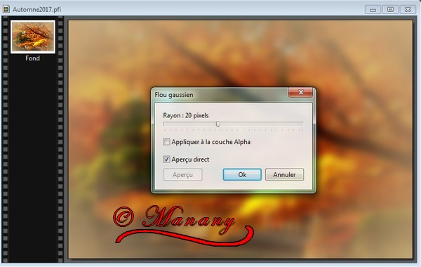 N° 8  Manany Tutorial Automne YV0WVzqYwSTasE_hvTtHjM1C92A