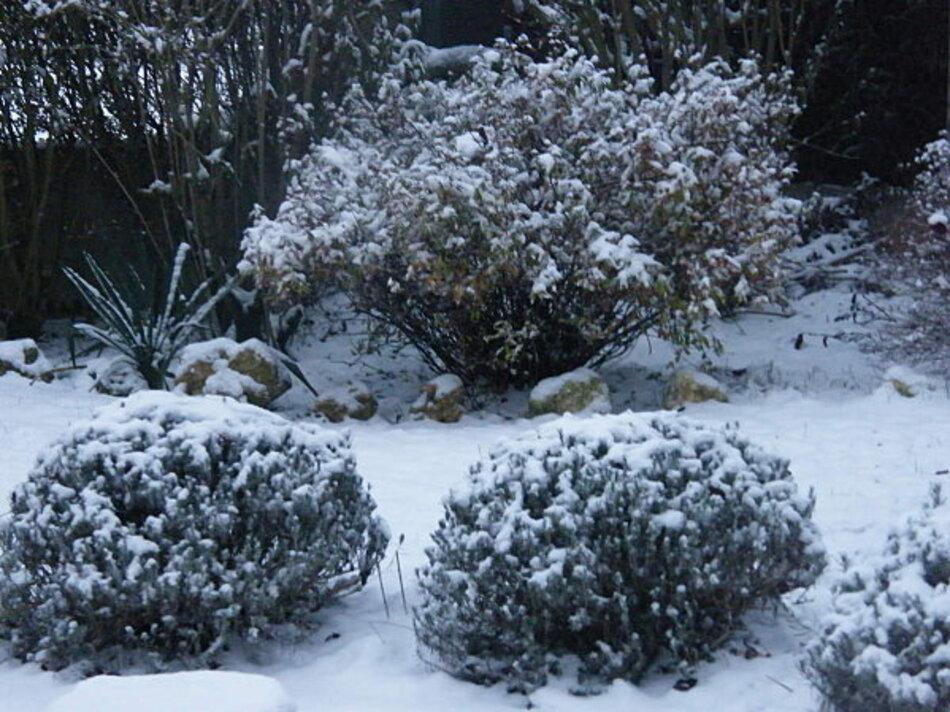 Le Jardin en Cent Poèmes (1)