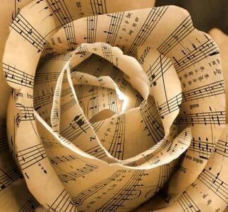 rose-musique.jpg