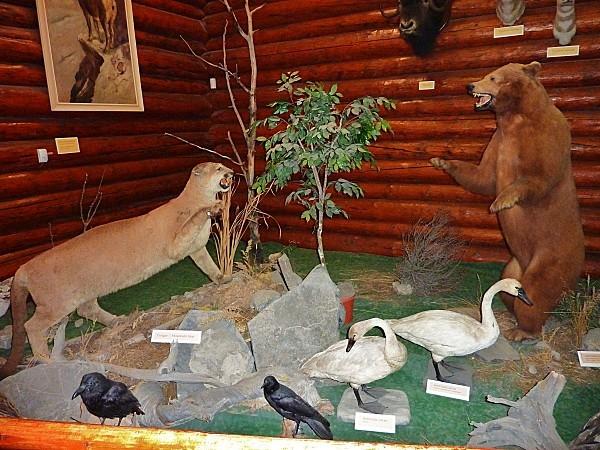 Jour 16 Banff musée Luxton