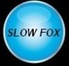 slow fox