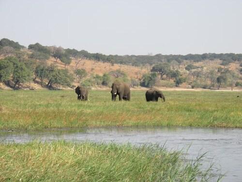Parc Chobe