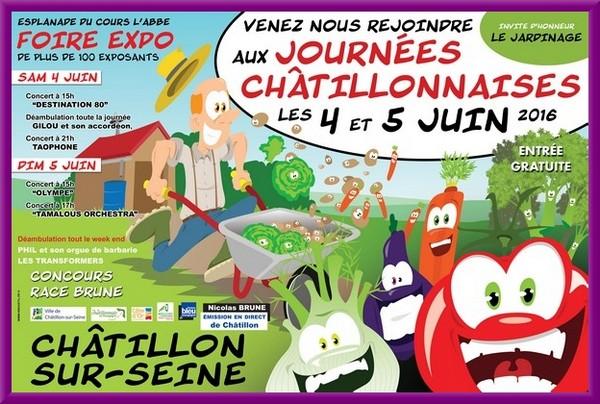 Les Journées Châtillonnaises 2016 auront lieu samedi 4 juin et dimanche 5 juin...
