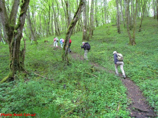 Une randonnée aux Sources de la Seine a été organisée par Châtillon-Scènes et les randonneurs de la MJC Lucie Aubrac