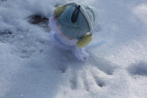 séance dans la neige partie 2