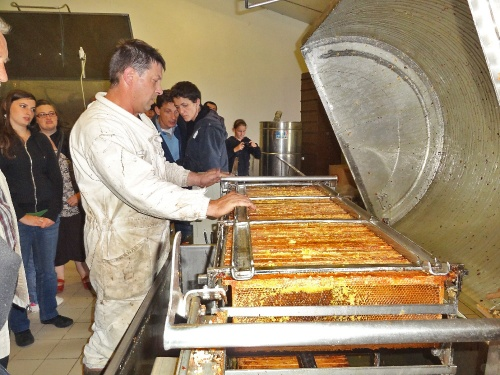 La miellerie Regnault de Savoisy