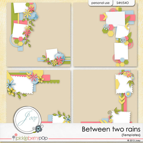 BETWEEN  TWO RAINS de JOEY