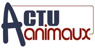 Logo Actuanimaux