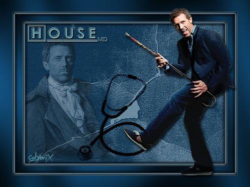 Docteur House