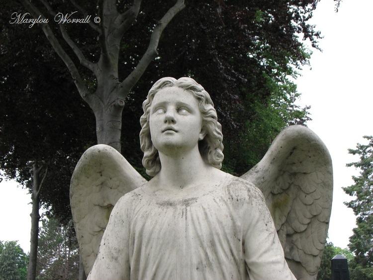 Ti tour au cimetière