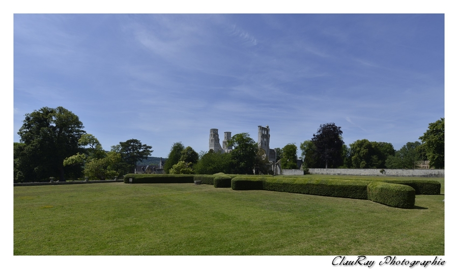 Abbaye Bénédictine de Jumièges - Seine Maritime - Normandie - 29 Juin 2015