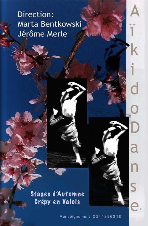Stage Aïkido/Danse - Renseignements