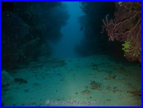 le couloir des gorgones