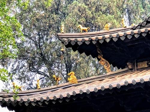 visite du temple d'or près de Kunming