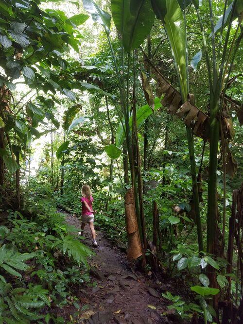 Une randonnée facile : la Cascade Anba So